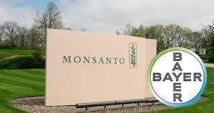 Monsanto no acepta oferta de Bayer
