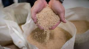 Perú, uno de los principales importadores de arroz