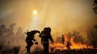Chile: Los incendios afectan en un 35 por ciento al turismo