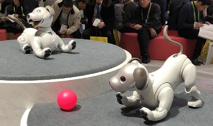 Aibo, es el robot de entretenimiento autónome de Sony. Su nombre es la contracción de robot con inteligencia artificial (artificial intelligence robot), además puede traducirse del japonés como compañero.